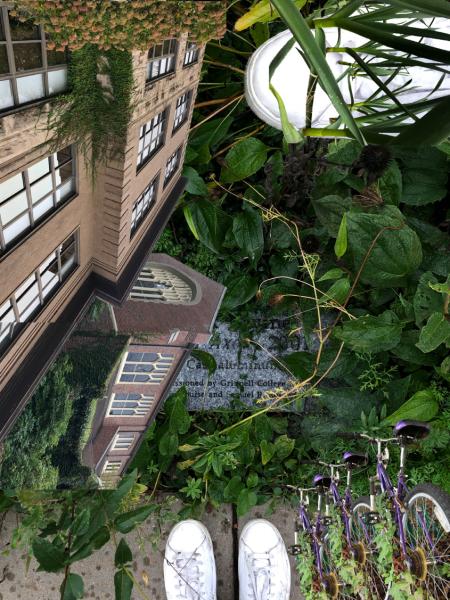 tesskerkhof_overgrown (1)